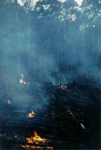 Φωτιά καταστρέφει τρόπικο δασος στη Βραζιλία