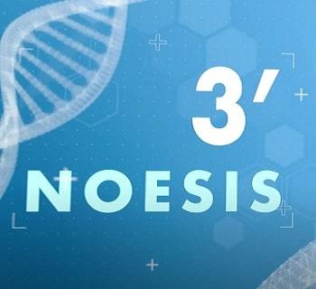 noesis3minutes